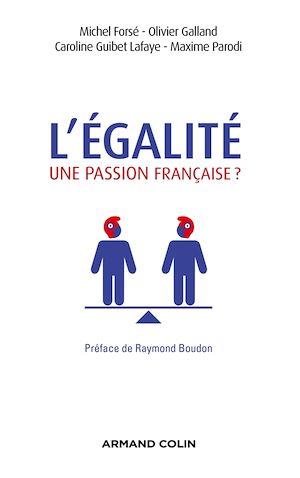 Téléchargez le livre :  L'égalité, une passion française ?