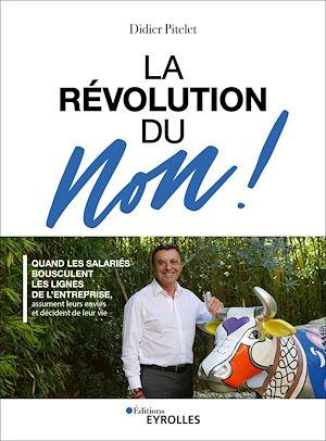 Téléchargez le livre :  La révolution du Non !