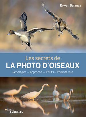 Téléchargez le livre :  Les secrets de la photo d'oiseaux