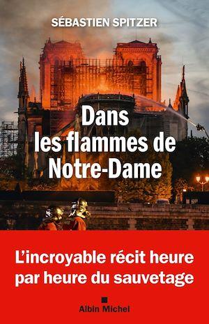 Image de couverture (Dans les flammes de Notre-Dame)