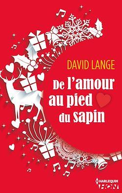 Télécharger le livre :  De l'amour au pied du sapin