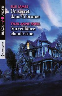 Télécharger le livre : Un secret dans la brume - Surveillance clandestine