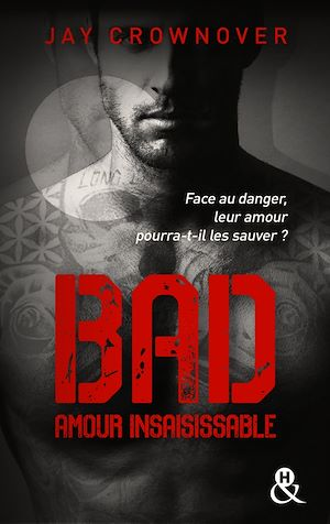 Téléchargez le livre :  Bad - T5 Amour insaisissable