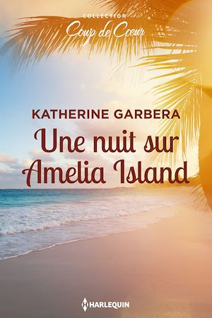 Téléchargez le livre :  Une nuit sur Amelia Island