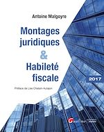 Télécharger cet ebook : Montages juridiques et habileté fiscale 2017