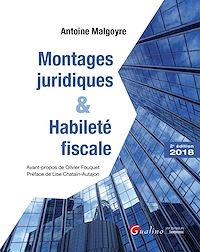 Télécharger le livre : Montages juridiques et habileté fiscale - 2e édition
