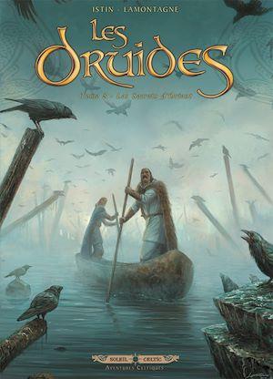 Téléchargez le livre :  Les Druides T08