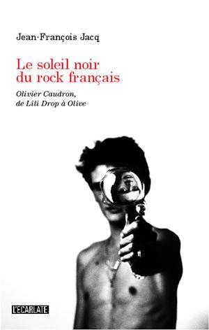 Téléchargez le livre :  Le soleil noir du rock français