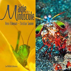 Téléchargez le livre :  La magie du Minuscule