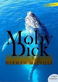 Télécharger le livre : Moby Dick
