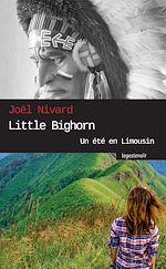 Télécharger le livre :  Little Bighorn