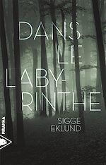 Télécharger le livre :  Dans le labyrinthe