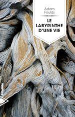 Télécharger le livre :  Le labyrinthe d'une vie