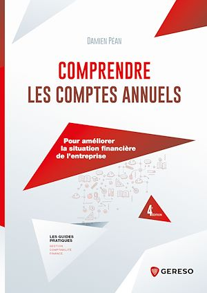 Téléchargez le livre :  Comprendre les comptes annuels
