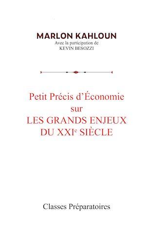 Téléchargez le livre :  Petit précis d'économie sur les grands enjeux du XXIe siècle