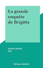 Télécharger le livre :  La grande enquête de Brigitte