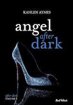 Télécharger le livre :  Angel after dark Vol.1