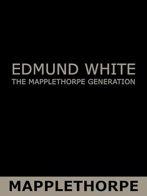 Téléchargez le livre :  The Mapplethorpe Generation