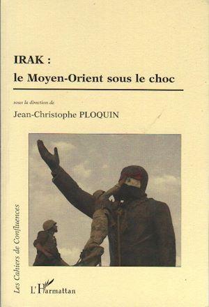 Téléchargez le livre :  Irak le Moyen-Orient sous le choc