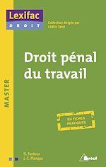 Télécharger cet ebook : Droit pénal du travail
