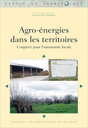 Téléchargez le livre :  Agro-énergies dans les territoires