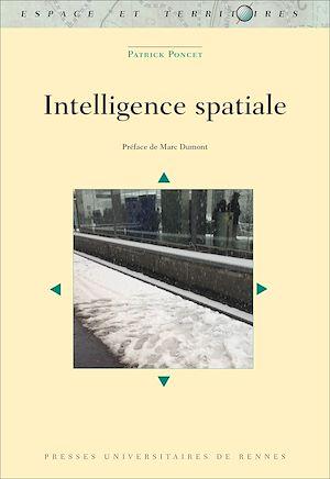 Téléchargez le livre :  Intelligence spatiale