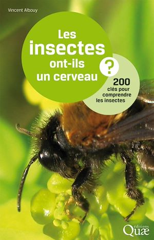 Téléchargez le livre :  Les insectes ont-ils un cerveau ?