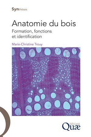Téléchargez le livre :  Anatomie du bois