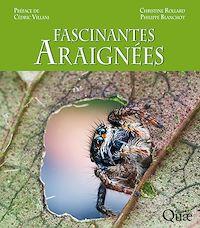 Télécharger le livre : Fascinantes araignées