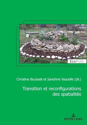 Téléchargez le livre :  Transition et reconfiguration des spatialités