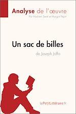 Télécharger cet ebook : Un sac de billes de Joseph Joffo (Analyse de l'oeuvre)