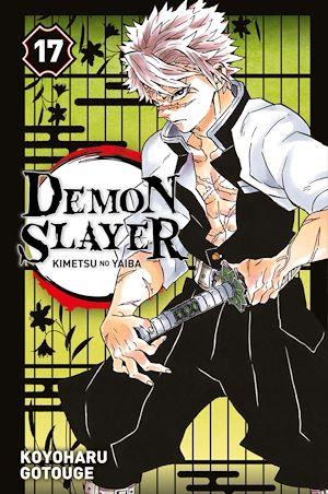 Téléchargez le livre :  Demon Slayer T17