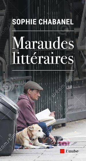 Téléchargez le livre :  Maraudes littéraires