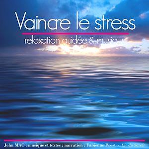 Téléchargez le livre :  Vaincre le stress