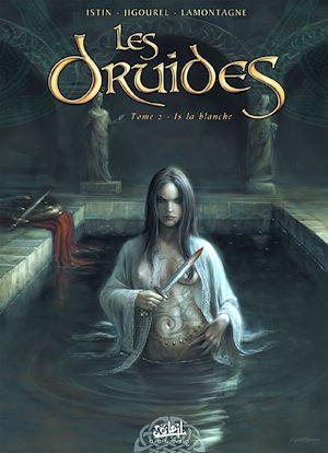 Téléchargez le livre :  Les Druides T02