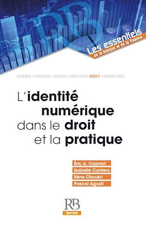Téléchargez le livre :  L'identité numérique dans le droit et la pratique