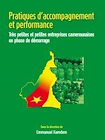 Télécharger le livre :  Pratiques d'accompagnement et performance
