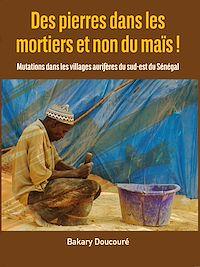 Télécharger le livre : Des pierres dans les mortiers et non du maïs !