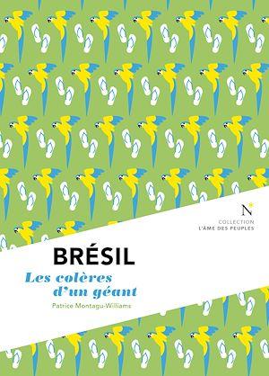 Téléchargez le livre :  Brésil : Les colères d'un géant