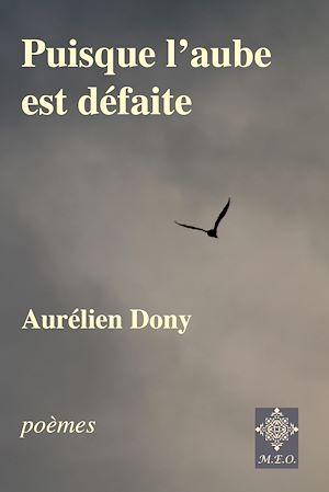 Téléchargez le livre :  Puisque l'aube est défaite