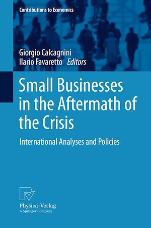 Téléchargez le livre :  Small Businesses in the Aftermath of the Crisis