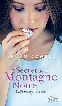 Télécharger le livre : Le secret de la montagne noire - tome 2 La promesse de cristal