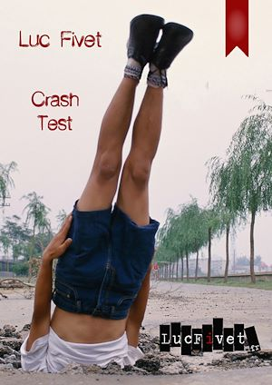 Téléchargez le livre :  Crash test